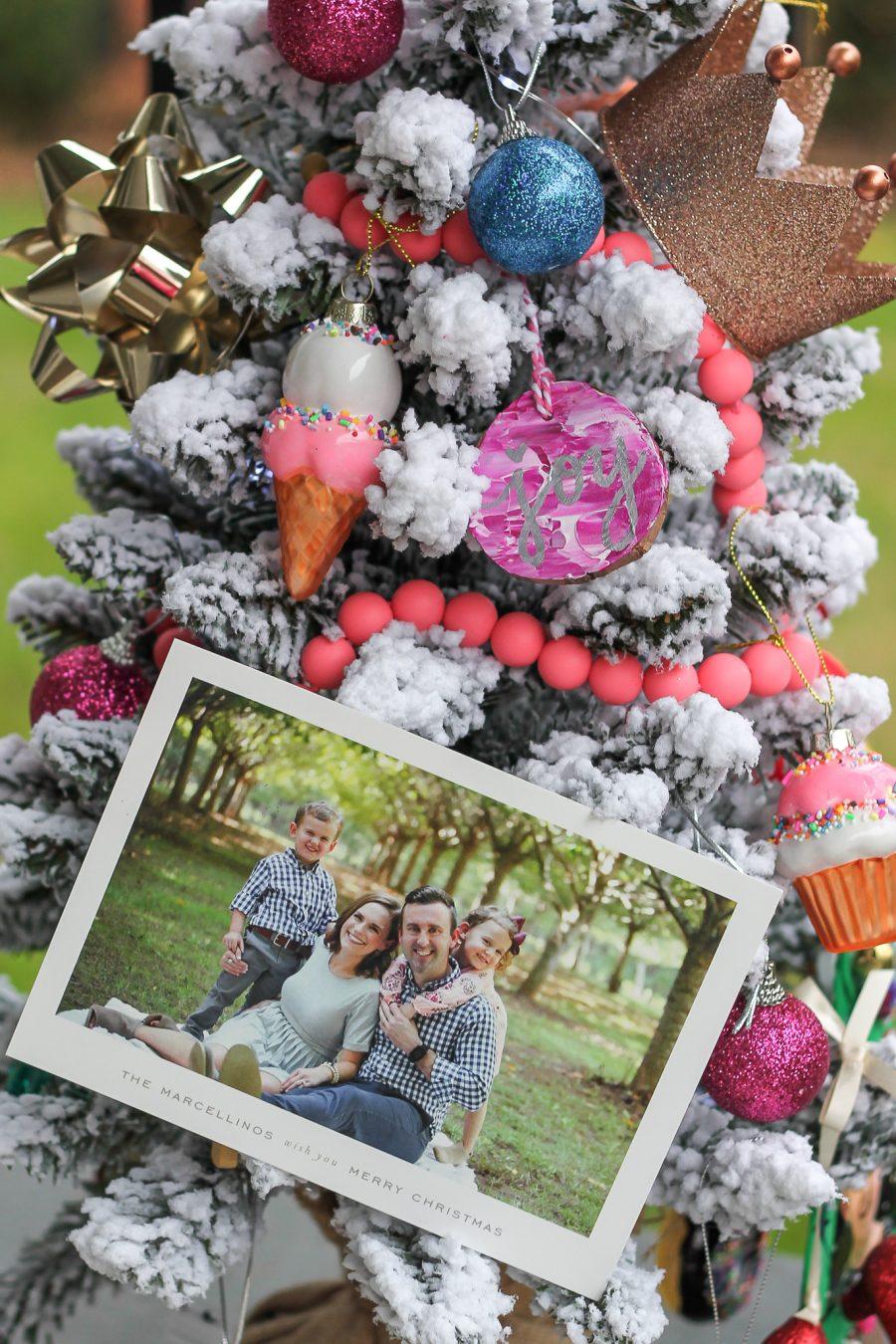Merry Christmas!   Our 2018 Family Christmas Card - Carolina Charm