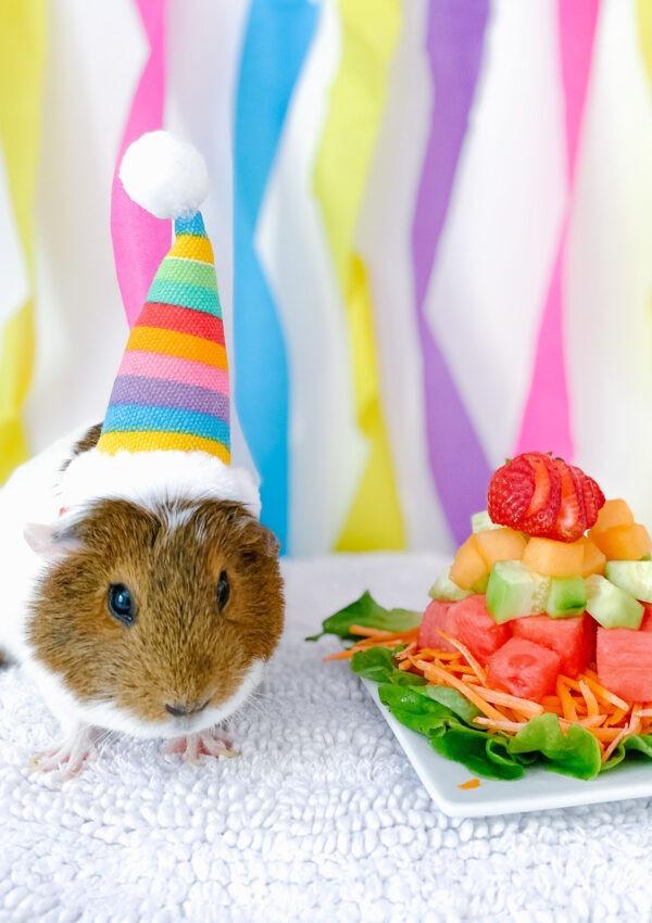 Happy 1st Birthday Sprinkles!